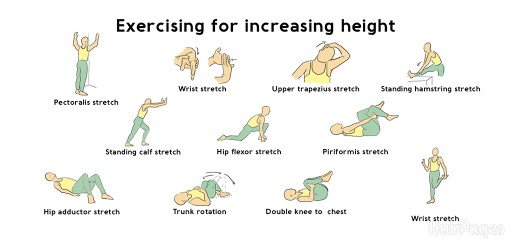 How to Increase Height Naturally Exercise