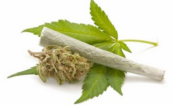 Effects Of Cannabis On Mental Health Due To Smoking