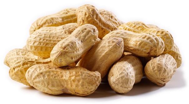 Peanuts: Brain- Responsive Nuts