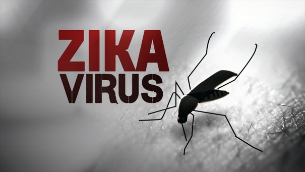 Zika virus Found in US