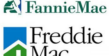 Understanding the GSEs Fannie Mae and Freddie Mac