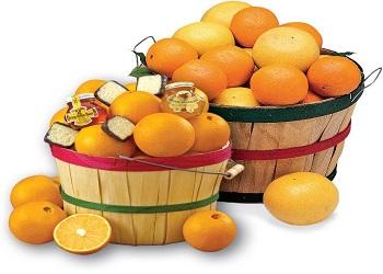 Citrus Fruits are Friends