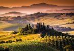 Tuscany Wine Tours - Tuscany trip